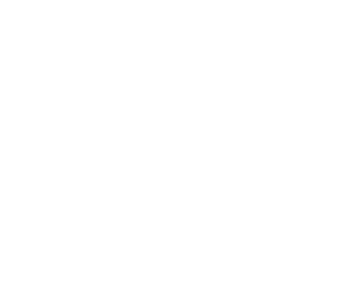 The Slow Learner